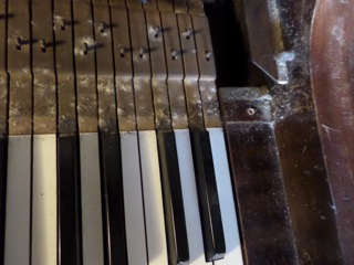 Malkin mould on keys behind Holbein ivories